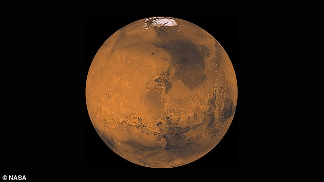 Muskhas previously floated the bizarre idea of bombing Mars to make its atmosphere more suitable for human colonisation