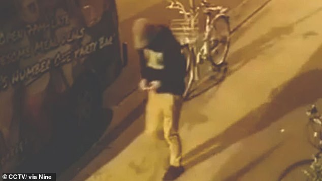Theo Hayez was last seen leaving Cheeky Monkey's restaurant and bar at Byron Bay in New South Wales on May 31, 2019, after being asked to leave about 11pm (pictured)