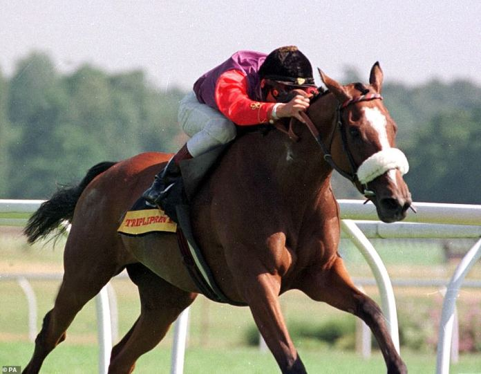 Among the Queen's favorite horses is Phantom Gold (photographed ridden by Frankie Dettori in 1996) who is the great-granddaughter of the superb broodmare of King Amicable
