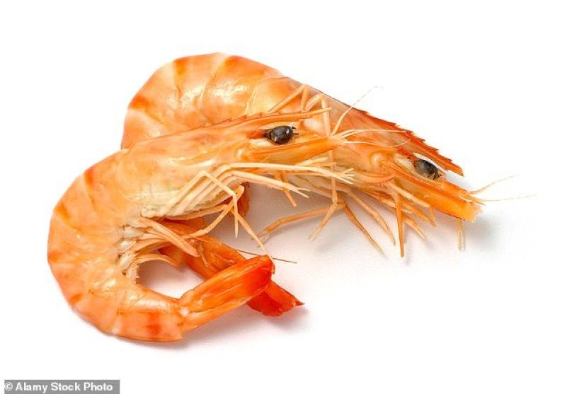 O aumento da acidez da água pode acabar com organismos como mariscos, ouriços e borboletas do mar, pois pode dissolver seus esqueletos e conchas calcificados