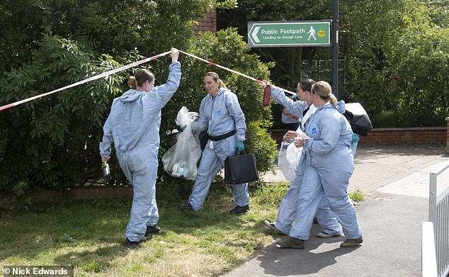 Allegations emerged last week that 'non-official and inappropriate photographs' had been taken at the murder scene. Pictured, forensic officers at the scene