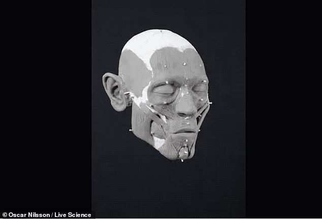 A forensic artist harnessed the power of 3D facial reconstruction to piece together the features on 8,000-year-old jawless skull to show a man with a pointy nose, large forehead and a long beard