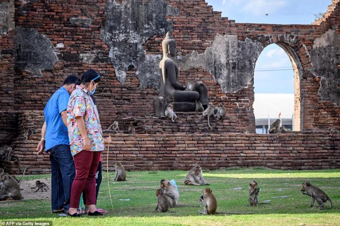 Domestic tourists walk around a shrine that is typically thronging with monkeys who were thrown fruit by the visitors, but the stream of food has now dried up