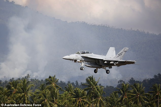 The missiles will be attached to F/A-18F Super Hornet planes (pictured) and can also be paired with other defence aircraft. Troops will be trained how to use the weapon next year