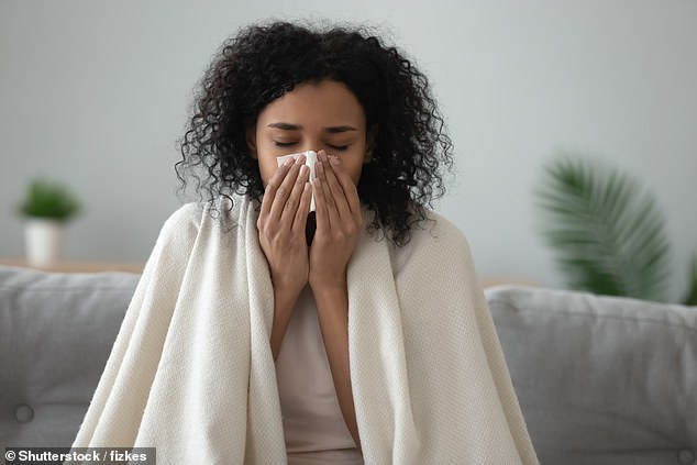 There are four types of coronavirus known to cause the common cold and people's