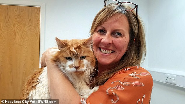 The world's oldest cat, Rubble sadly passed away at the age of 31-almost 150 in human years. Pictured with ownerMichele Heritage,52