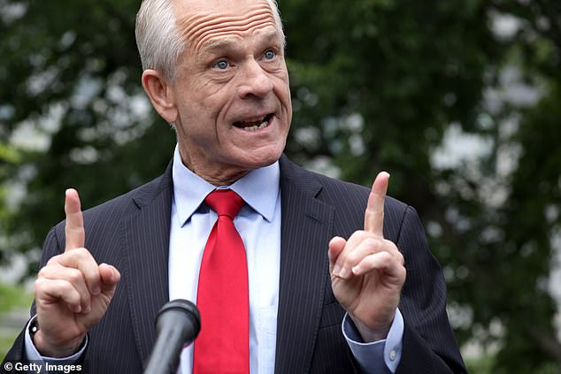 White House economic adviser Peter Navarro praised the findings of the new study, claiming that if they'd been made earlier, tens of thousands of lives could have been saved. He hit out at the FDA, incorrectly blaming the agency for 'shutting down' hydroxychloroquine studies
