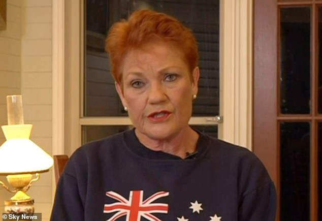 Hanson denied claims her comments on the Today showabout Melbourne's locked down public housing residents were 'ill-informed' and that they constituted racism.