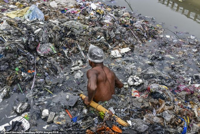 A volunteers wades through waste holding a bamboo shoot to keep upright while wearing only a plastic bag on his head for protection