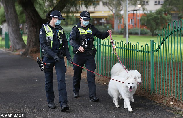 Police walk dogs belonging to residents of the Alfred Street public housing tower which remains under tight lockdown in North Melbourne on July 11