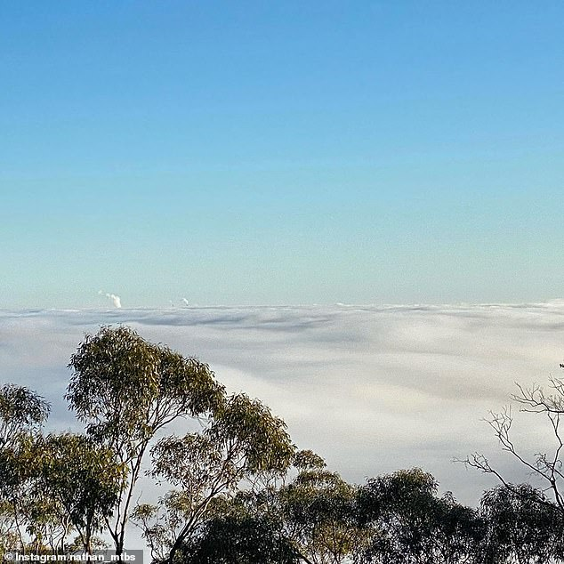 Pictured: Adelaide was invisible from the Adelaide Hills on Tuesday as clouds of fog hung over the city