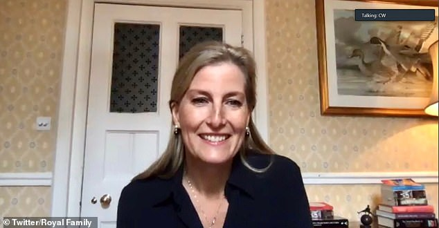 Sophie Wessex, 55, Patron of IAPB, helped to launch the 2020 Eye Health Heroes award programme via video link last week (pictured)