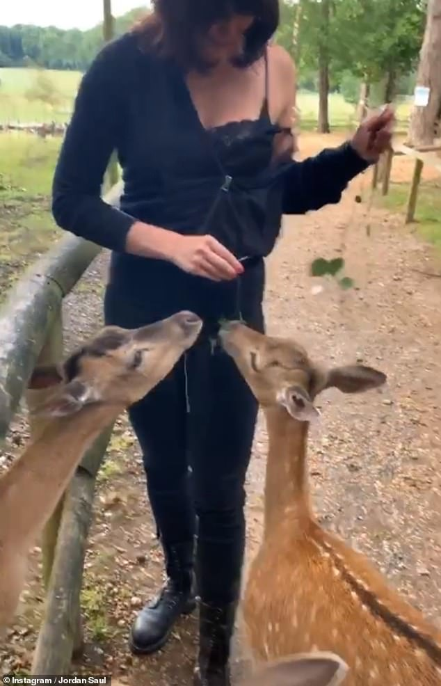 Getting on well: In July, Jordan shared a video of his recent trip to the zoo with Daisy on Tuesday, where the model can be seen feeding some deer