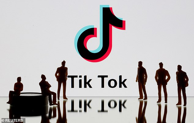 Certainly, TikTok has been the source of security flaws. Earlier this year experts found a major flaw (since patched) that could potentially allow an attacker to control someone else's account (file image)