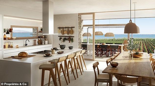 Mediterranean roots: the interiors were designed by Lázaro Rosa Violan