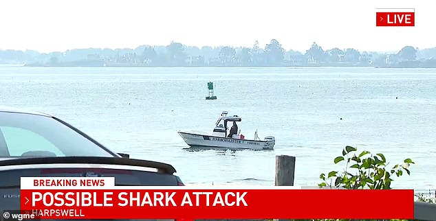 Witnesses at the scene said the woman was swimming off the shore near While Sails Lane when she was injured in the shark attack