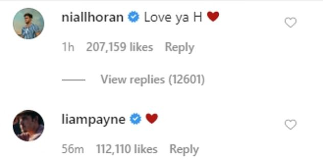 Lovely: Harry's former bandmates Niall and Liam were quick to react to the post, with 'Love ya H' and a heart emoji