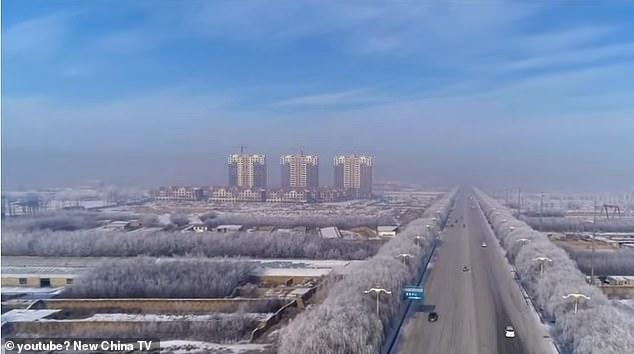 La Región Autónoma de Mongolia Interior de China ha visto su segunda muerte por plaga en la última semana después de que un paciente muriera en Bayannao'er el viernes.