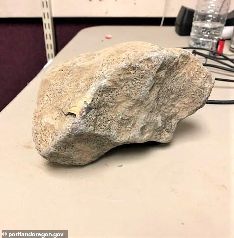 Rocks and chunks of cement were hurled at officers on Friday night