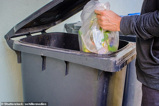 The list of demands also questions if lidded bins with double bagging be available in every classroom. (Stock image)