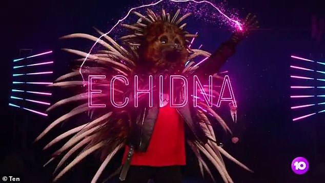 Who are you? On Monday night's episode of The Masked Singer Australia , the Echidna was the first to be revealed