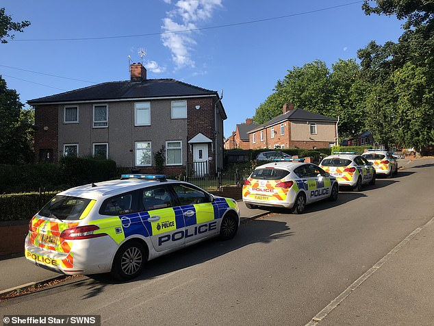 Emergency services scrambled to a suburb of Sheffield shortly after midnight following reports of violence, which came after a house party celebrating Jamaica's independence day. (Above, police at the scene)