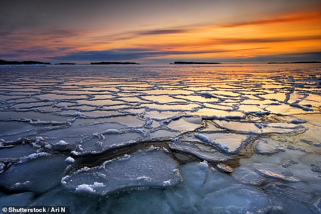 Arctic sea ice is rapidly in decline due to global warming and a study predicts it will be completely gone by 2035 (stock)