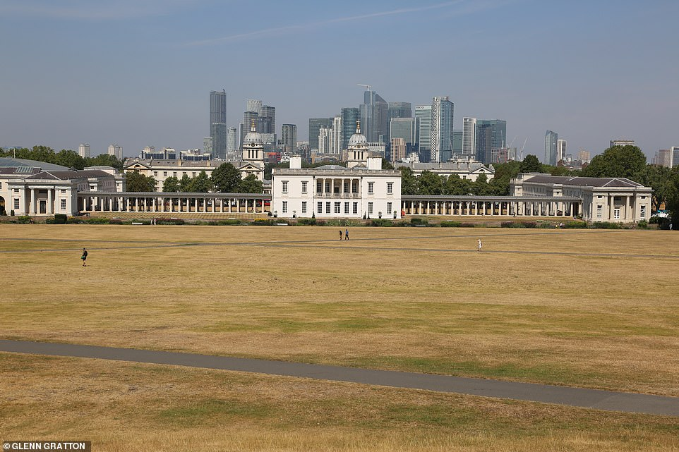 The scorched grass at Greenwich Park in South East London today as the heatwave continues in southern England