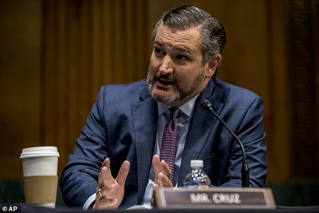 Texas Senator Ted Cruz slammed Democrats for wanting to give unemployed Americans a higher boost in benefits, sarcastically quipping 'We have a magic money tree – we should use it!'