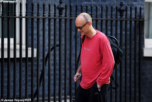 The highly anticipated Integrated Defence and Security review is spearheaded by Dominic Cummings (pictured outside Downing Street earlier this week)