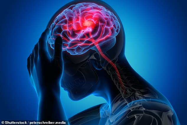 Blood transfusions may have the potential to protect patients from brain damage following a stroke, a study on mice has suggested (stock image)