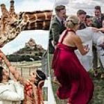 Hilarious gallery reveals the perfectly timed snaps that capture embarrassing moments at weddings
