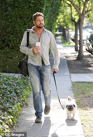 The number of brachycephalic dogs has boomed dramatically across the world in the last decade, due in part to their popularity with celebrities including Gerard Butler