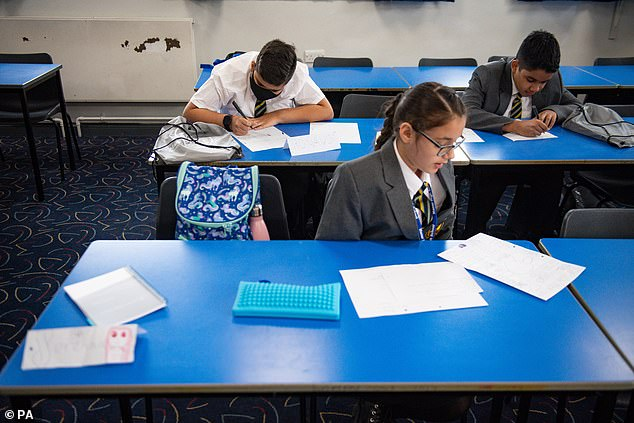 A head teachers' union said the Government's failure to provide the promised access to testing is threatening to derail the full reopening of schools (file image)