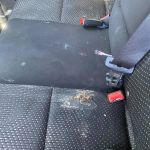 Exhausted mother-of-two who cleaned four years of food stains from the backseat of car hailed a hero