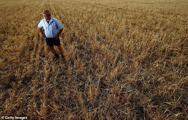 Australian farmers were already effectively barred from exporting barley to China, which imposed tariffs of 80.5% on the product in June.