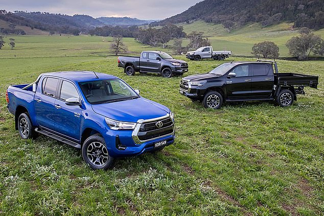 The Toyota HiLux had a bad month, despite the release late last month of an updated model, with its sales diving by 66.9 per cent. Sales of the dual cab and workhorse ute fell to nine on the sales chart