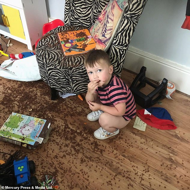 The destructive tot has been described by his mother Steffi as a 'walking tornado'. Pictured eating what appears to be chocolate cereal that he has spilled on the floor