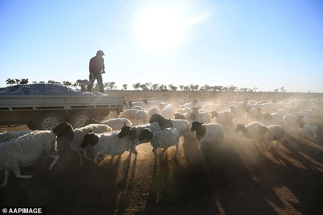 Ahead of Friday's meeting, state government's have been urged to back a national agriculture code to ensure border closures don't diminish Australia's food production