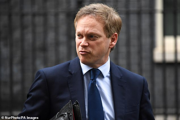 Transport Secretary Grant Shapps (pictured) has not held an official meeting with Heathrow airport in recent weeks despite mounting evidence of an industry in crisis