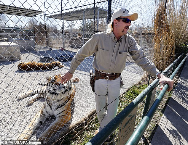 Claws out: Carole rose to fame recently as she appeared in the Netflix documentary with her arch rival Joe Exotic (pictured)