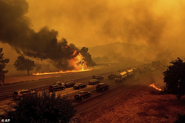 The LNU Lightning Complex fires have scorched more than 352,913 acres of land in Northern California. The blaze is pictured near the Caroll's home in Vacaville on Wednesday