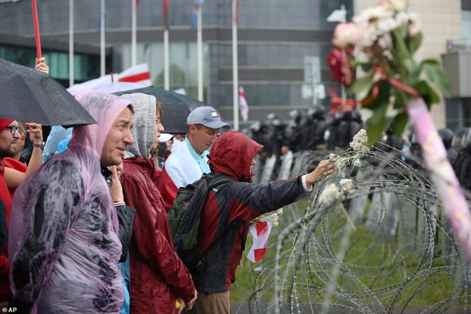 Demonstrators place flowers in barbed wire as they protested against the presidential vote they say was rigged