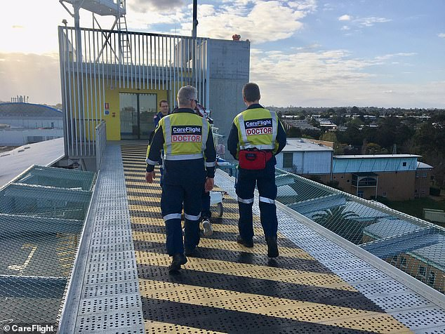 The three CareFlight medical crew (pictured) who provided critical care to a boy knocked unconscious in a trampoline fall are all dads themselves. Pictured are the crew transporting the boy to The Children's Hospital at Westmead on Sunday