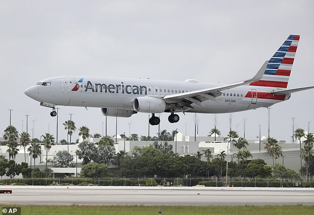 American Airlines is facing backlash among workers after allowing its cabin crew to wear Black Lives Matter pins on their uniforms while on duty (stock image)