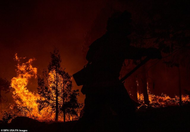A firefighter is silhouetted against the blazing forest as he battles the Creek Fire in northern California on Monday