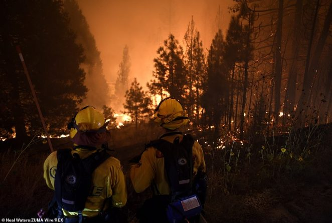 The Creek Fire has rapidly increased in size, and is currently being fought by 800 fire fighters from across the region