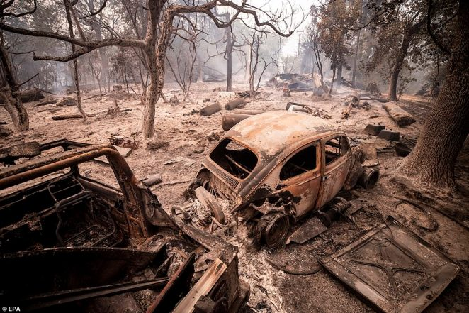 Burnt down cars are pictured on Tuesday amid the scorched smoldering trees after the passage of the Creek Fire