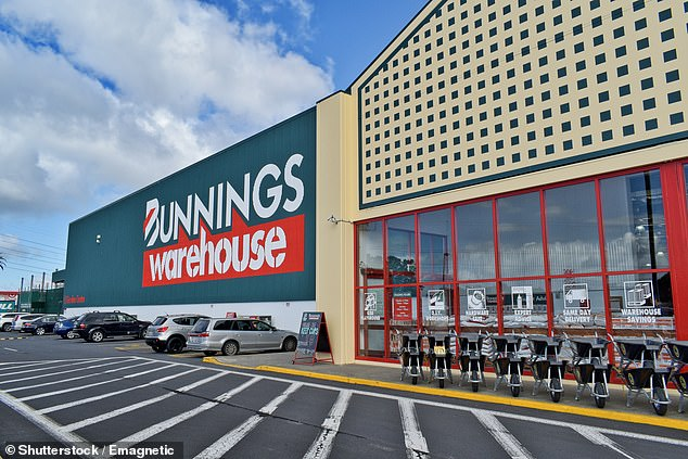 Bunnings was alerted to the discovery of the beetle by a tradie with the popular hardware franchise saying they had control measures in place but they were not 100 per cent effective