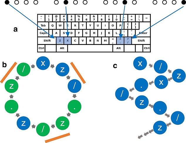 When a dot appeared, they pushed a button and the dots would move faster as the test carried on. The team observed some participants subconsciously learned the patterns of the dots and pushed the button for the next dot before it appeared